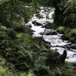 Urlaub in Villgraten, Bach